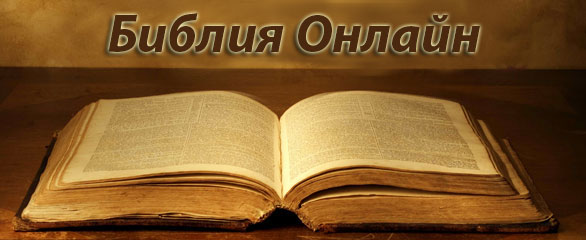 Библия — самая противоречивая книга